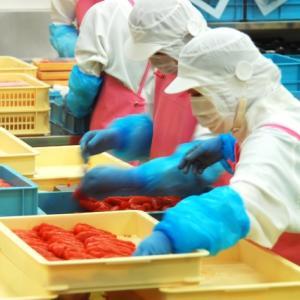 【短期で稼ぎたい方向け!】食品工場でのバイト体験談を紹介