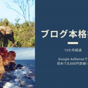 ブログ本格始動13か月経過|Google AdSenseで初めて8,000円突破✨