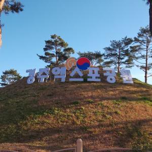 慶州エキスポ公園 ~近未来の公園と呼ばれる慶州の観光スポットに行ってきました~