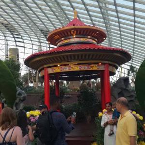 フラワードーム ~シンガポールでお花に癒された場所です~