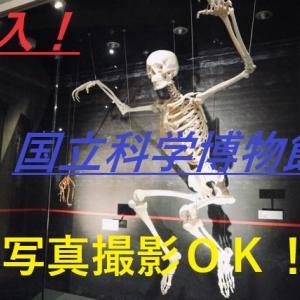 写真撮影OK!?上野の「国立科学博物館」 ネタ探しにも
