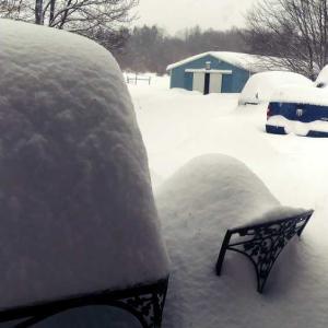 げ、雪が...