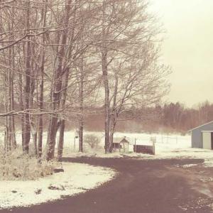 エイプリルフール、雪が積もった。