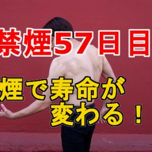 【禁煙57日目】禁煙すると生まれ変わる!禁煙期間とその効果