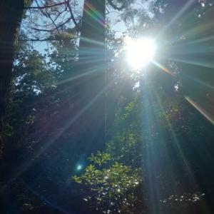 自然の恵に感謝する日