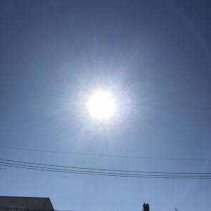 太陽のエネルギーを感じるといいよっ
