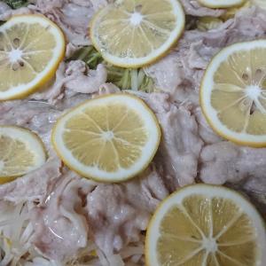 【カルディ】大人気の塩レモン鍋がやばい!