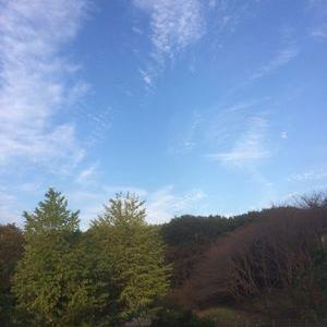 秋の空と夫婦喧嘩