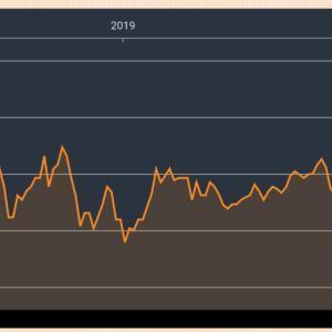 ベトナム株、最高値から30%以上暴落で私の資産も含み損へ