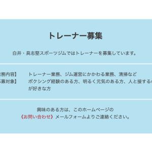 【ボクシング】野木丈司トレーナー 白井具志堅ジムを離れる