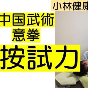 【YouTube】中国武術意拳、扶按試力