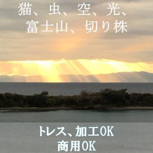 【電子書籍】写真資料集【猫、虫、空、光、富士山、切り株】トレス、商用OK