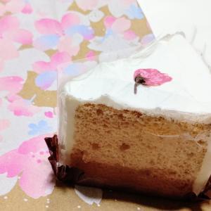 スタバ ふんわりとさくら香る「さくらシフォンケーキ」
