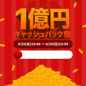 始まりました、1億円キャッシュバック!でも…