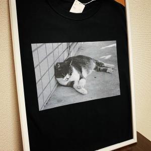 ロゴデザインとTシャツ作成