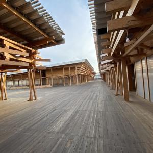 東京オリンピック2020組織委員会 働き始めてほぼ3週間。