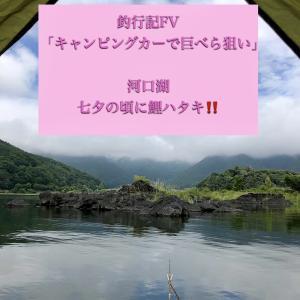 2019年七夕の頃🎋魚やワンドで〜🐟FV公開中‼️