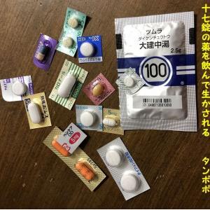 薬が多すぎる