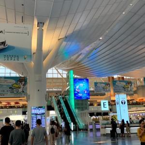 【観光】金曜夜はビジネスマンばかり!大韓航空に乗って、1か月ぶりの韓国へ~