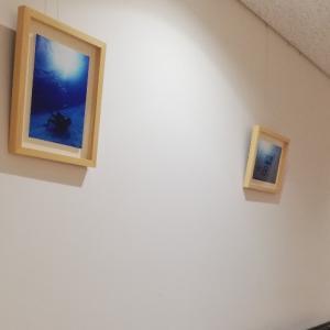 夢はひろがる!3つめの病院、大阪堺市にある耳原総合病院で海の写真展示スタート!