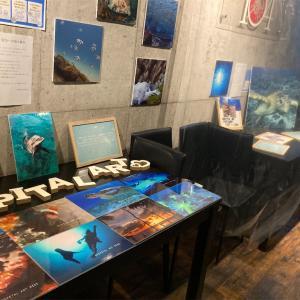 ホスピタルアート展示開催