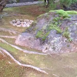 京都 眼科の旅 鴨川と置き石専門
