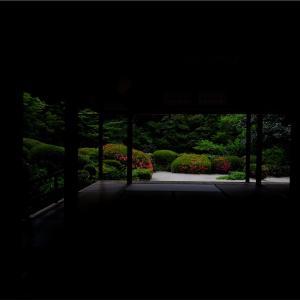 京都で皐月(花)と言えば