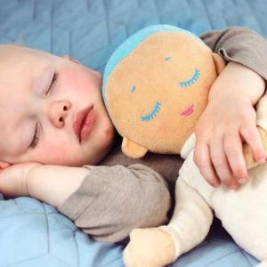 快適な睡眠のために、いただきたい食べもの。