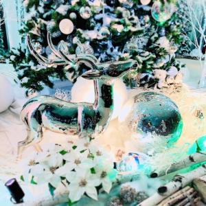 【PR】冬の六本木と自分時間を優雅に愉しむホテルライフ「グランドハイアット東京」さん。
