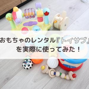 月齢に合ったおもちゃで遊べる!トイサブでおもちゃをレンタル