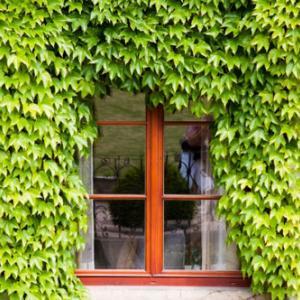 住友林業の注文住宅|サッシの色の選び方