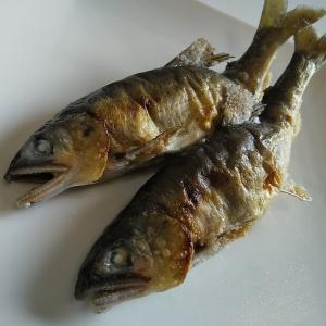 鮎、年魚、香魚、をいただきました