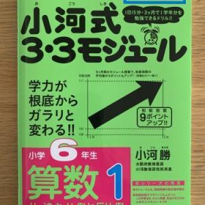 算数の教材(『小河式3・3モジュール 小学6年生算数1 比・速さ・比例と反比例』)