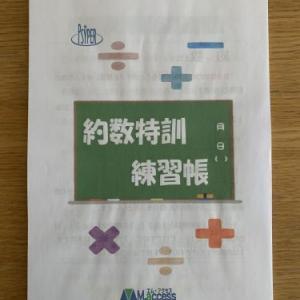 算数の教材(『約数特訓練習帳』)