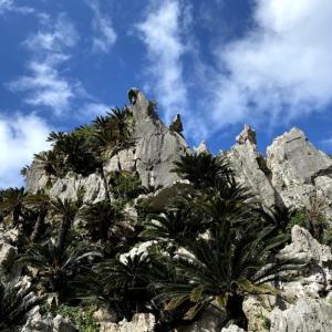 【2020年最新版】沖縄旅行で大自然パワースポット大石林山をおすすめする理由