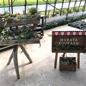 村田耕花園さんへ行ってきました!