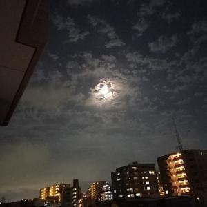満月に拝む