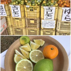 カルディのレモン鍋の素+瀬戸田レモンで絶品レモン鍋♪