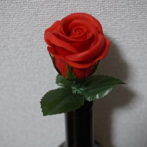 カーネーションと薔薇の違いも分からない男です!