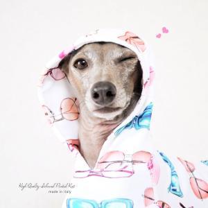 【ARATA HOUSEメンバー限定】犬を飼う前に知ると家族が幸せになる13の事【2匹目の犬を迎えるまでの物語2】