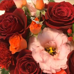 【報告】結婚しました&記念日デート【ディナークルーズ】
