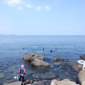 【GoTo】初島でシュノーケリングしたよん!【ありのままの海の中】