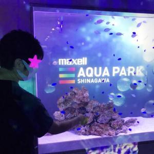 【水族館】マクセルアクアパーク品川に行ってきたよ♡【デート】