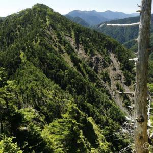 〔200名山〕池口岳 ~深南部の重厚なる双耳峰!ロングで北峰で力尽きる~
