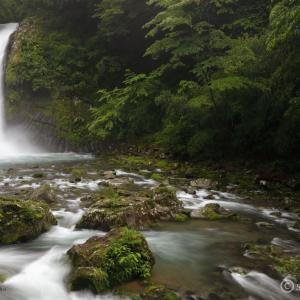 〔100名瀑〕浄蓮の滝 ~伊豆の踊子を思いながらの伊豆最大級の滝巡り~