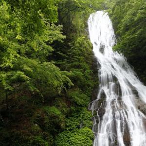 〔100名瀑〕丸神の滝 ~両神山山麓に掛かる奥秩父の名瀑へ~
