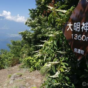 〔300名山〕斑尾山/大明神岳 夏~往復2時間でサクッと頂上展望~