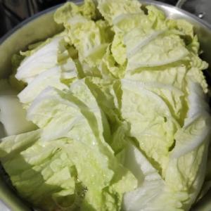 いただきものの冷凍餃子で鍋