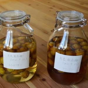 2012年10月6日美味しい梅酒、まもなく解禁!「梅酒バーらっき~」近日開催!