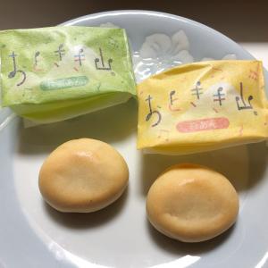 名古屋で有名な和菓子でお土産でも人気のお店「両口屋是清」さんに行って来た!